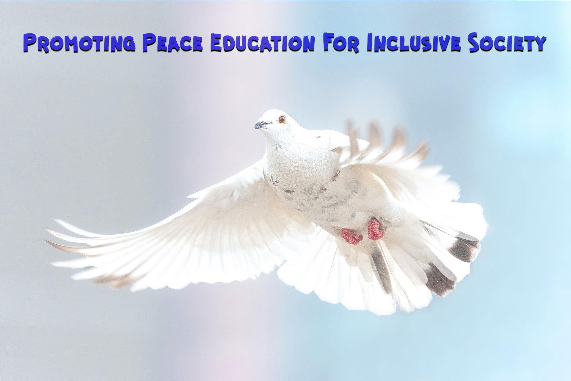 promoting-peace-education